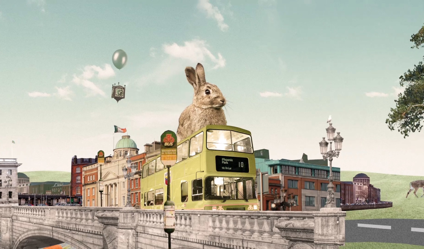 """The Legend of the Bunny on the Bus"" - Our latest production with Televisor studio for Dublin Bus."