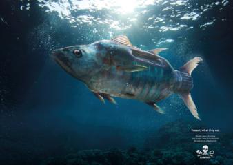 Platinum for Sea Shepherd
